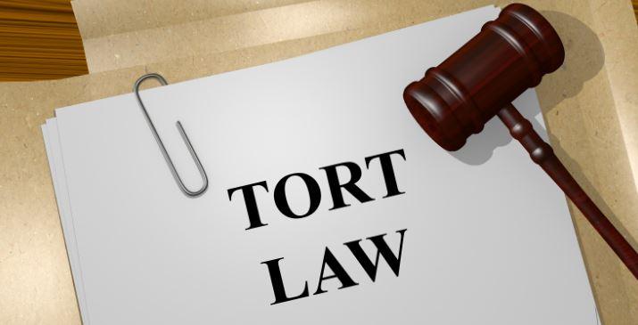 Tort Law Dissertations