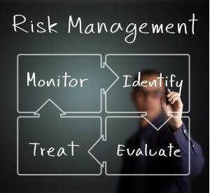 Risk Management Strategies Dissertation